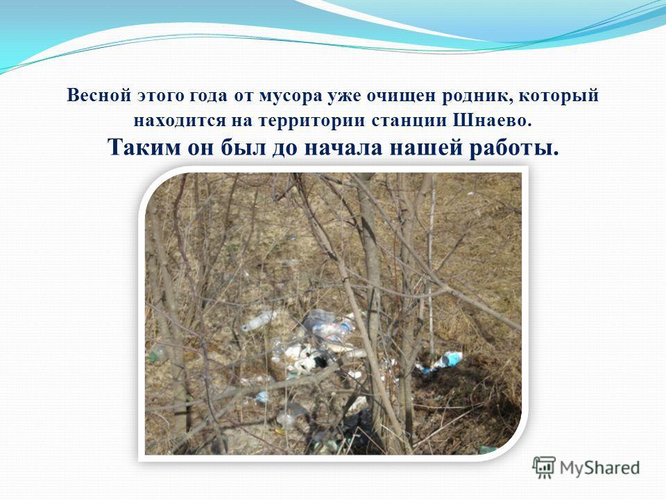 Весной этого года от мусора уже очищен родник, который находится на территории станции Шнаево. Таким он был до начала нашей работы.