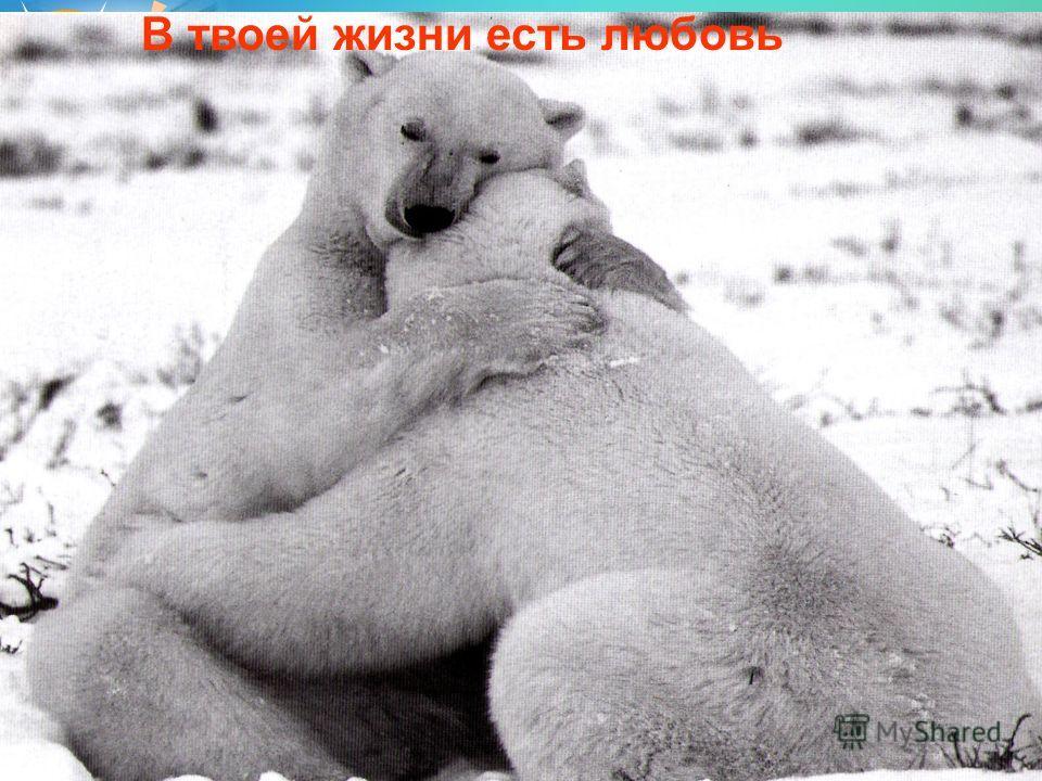 В твоей жизни есть любовь