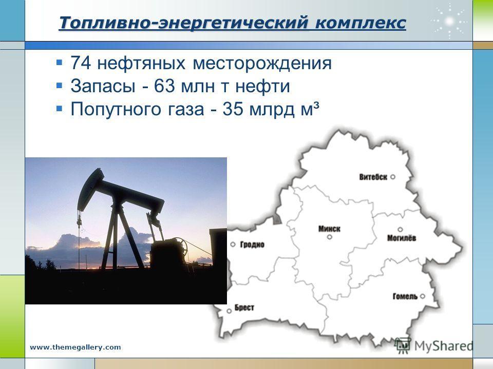 Company Logo www.themegallery.com Топливно-энергетический Топливно-энергетический комплекс 74 нефтяных месторождения Запасы - 63 млн т нефти Попутного газа - 35 млрд м³