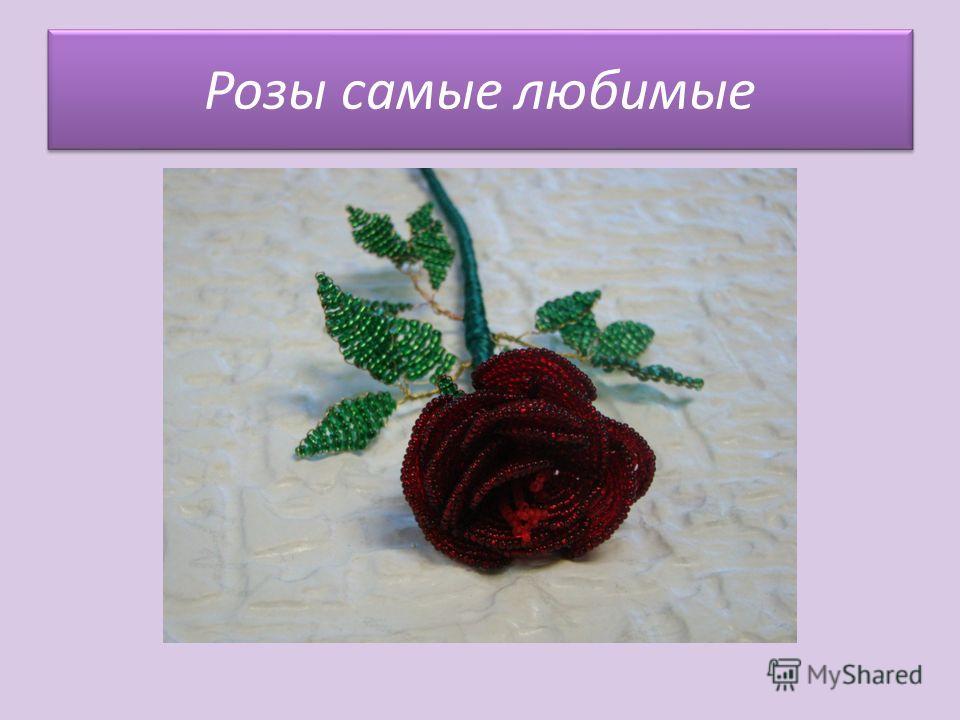 Розы самые любимые