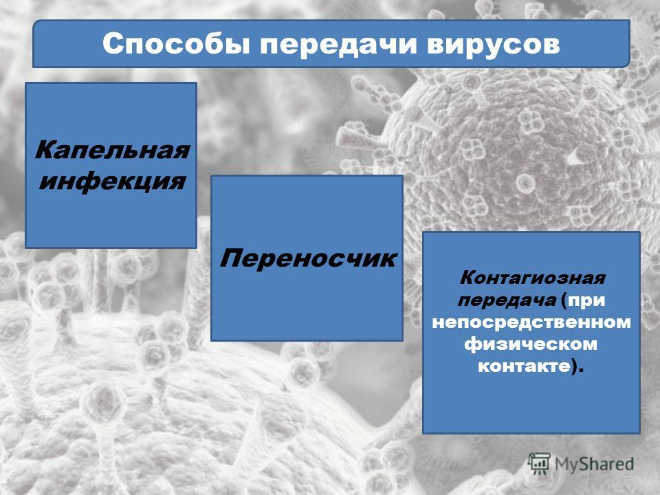 Способы передачи вирусов Капельная инфекция Переносчик Контагиозная передача (при непосредственном физическом контакте).