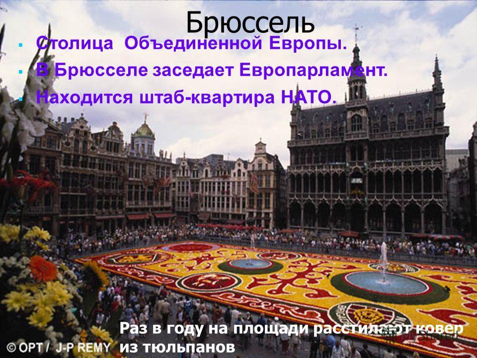 Писаревская Т.П. Баган Брюссель Столица Объединенной Европы. В Брюсселе заседает Европарламент. Находится штаб-квартира НАТО. Раз в году на площади расстилают ковер из тюльпанов