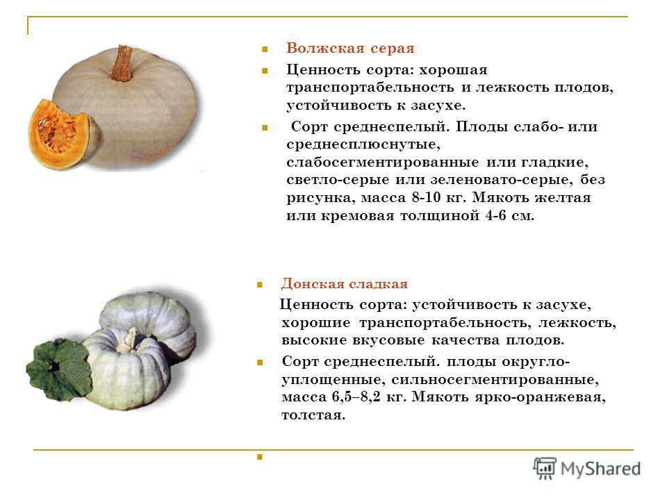 Волжская серая Ценность сорта: хорошая транспортабельность и лежкость плодов, устойчивость к засухе. Сорт среднеспелый. Плоды слабо- или среднесплюснутые, слабосегментированные или гладкие, светло-серые или зеленовато-серые, без рисунка, масса 8-10 к