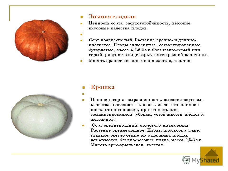 Зимняя сладкая Ценность сорта: засухоустойчивость, высокие вкусовые качества плодов. Сорт позднеспелый. Растение средне- и длинно- плетистое. Плоды сплюснутые, сегментированные, бугорчатые, масса 4,2-6,2 кг. Фон темно-серый или серый, рисунок в виде