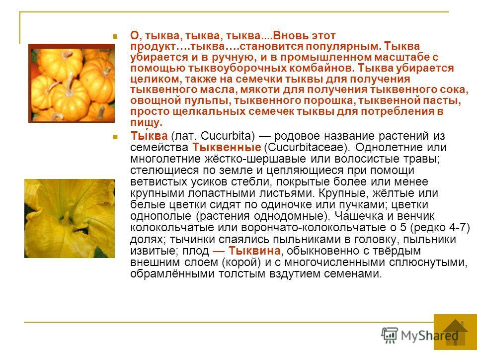 О, тыква, тыква, тыква....Вновь этот продукт….тыква….становится популярным. Тыква убирается и в ручную, и в промышленном масштабе с помощью тыквоуборочных комбайнов. Тыква убирается целиком, также на семечки тыквы для получения тыквенного масла, мяко