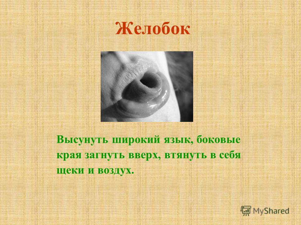 Желобок Высунуть широкий язык, боковые края загнуть вверх, втянуть в себя щеки и воздух.