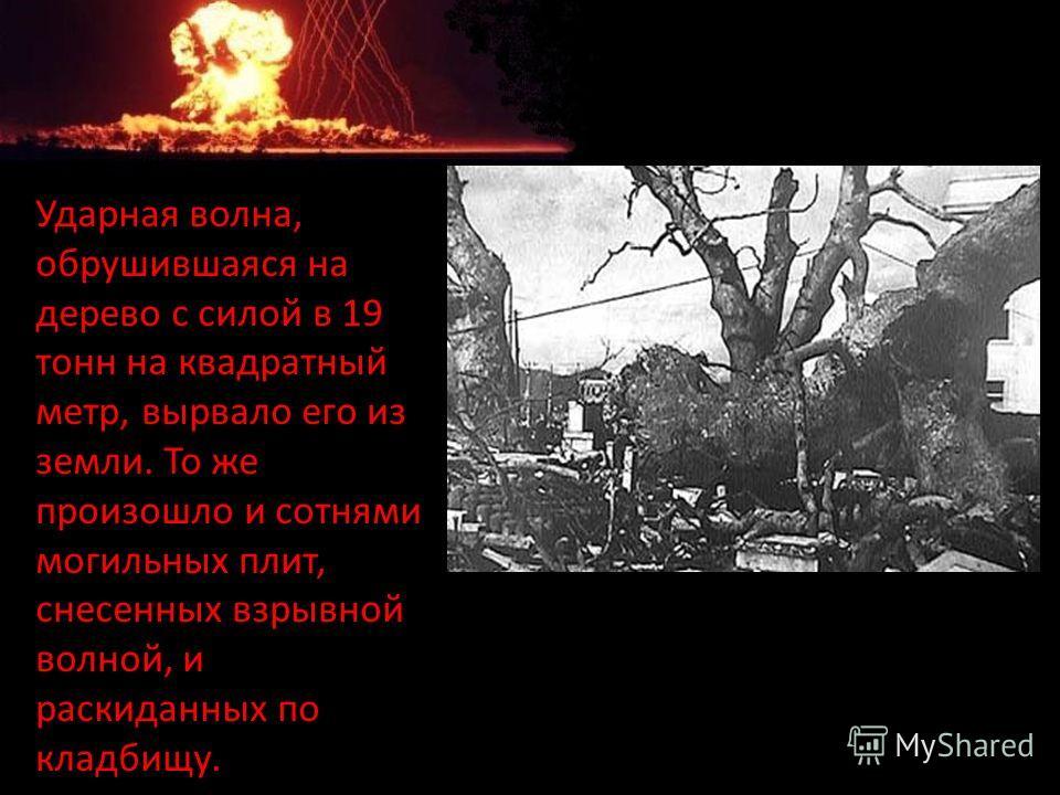 Ударная волна, обрушившаяся на дерево с силой в 19 тонн на квадратный метр, вырвало его из земли. То же произошло и сотнями могильных плит, снесенных взрывной волной, и раскиданных по кладбищу.