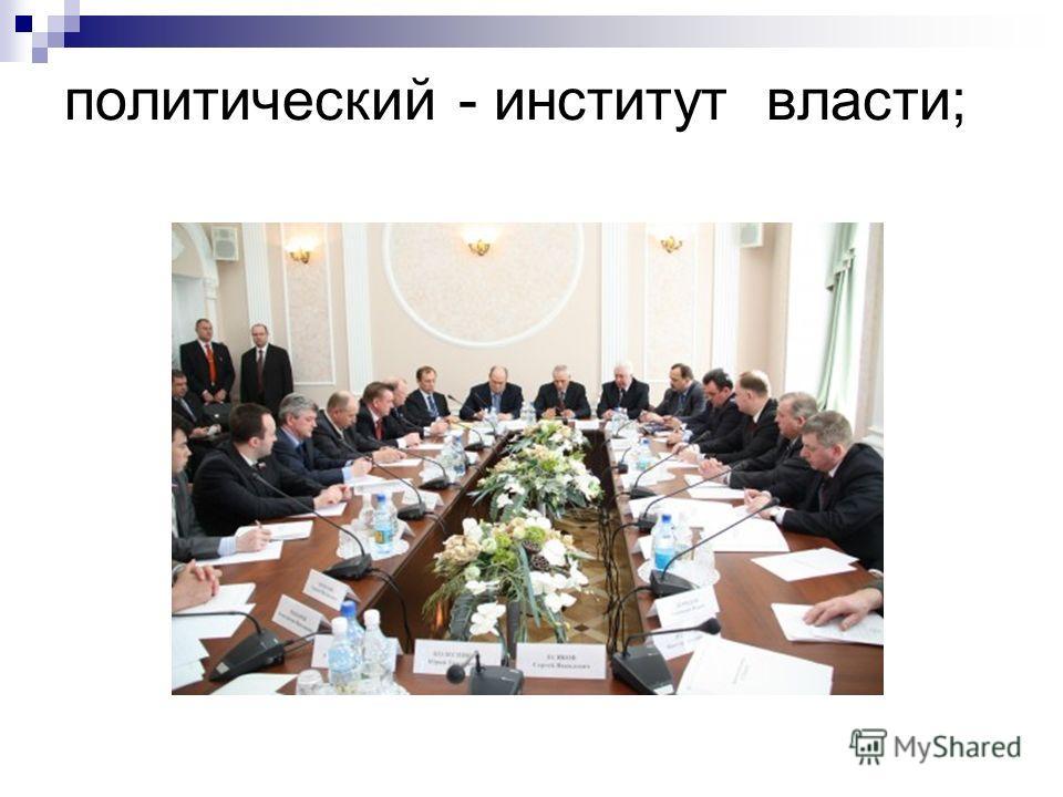 политический - институт власти;