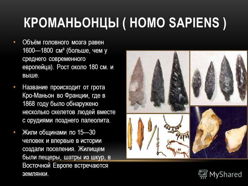 КРОМАНЬОНЦЫ ( HOMO SAPIENS ) Объём головного мозга равен 16001800 см³ (больше, чем у среднего современного европейца). Рост около 180 см. и выше. Название происходит от грота Кро-Маньон во Франции, где в 1868 году было обнаружено несколько скелетов л