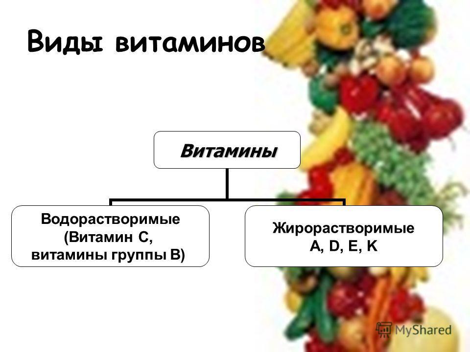 Виды витаминовВитамины Водорастворимые (Витамин С, витамины группы В) Жирорастворимые A, D, E, K