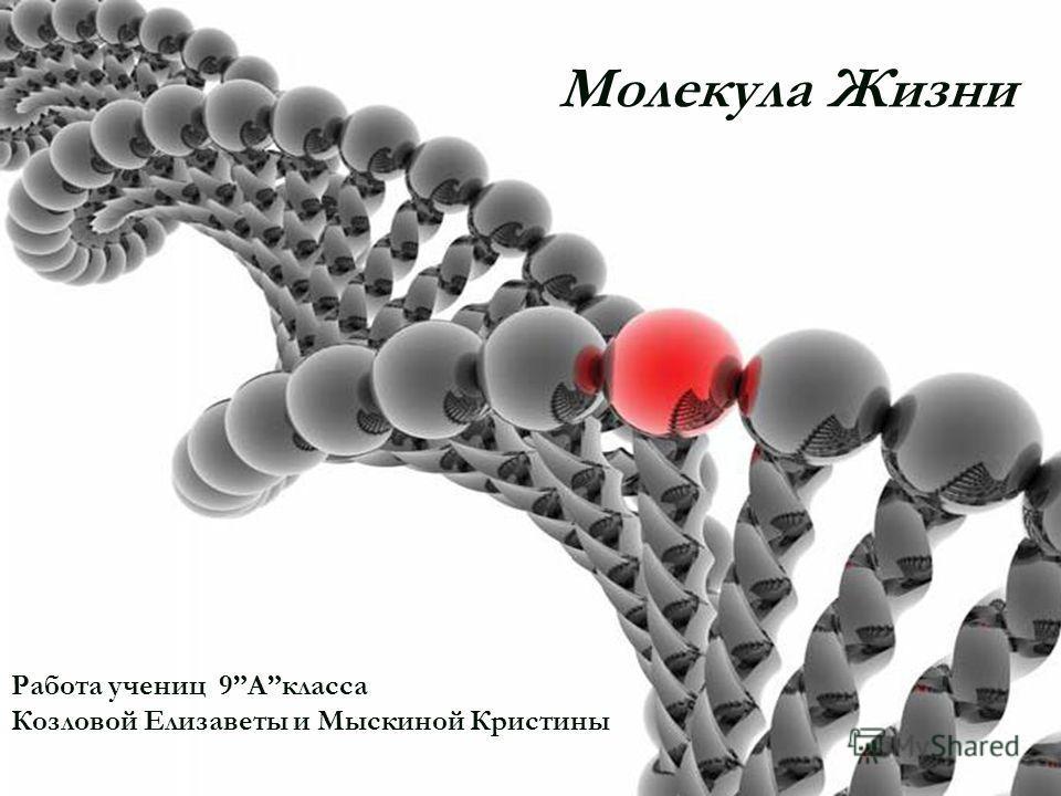 ДНК. ДНК Работа учениц 9Акласса Козловой Елизаветы и Мыскиной Кристины Молекула Жизни