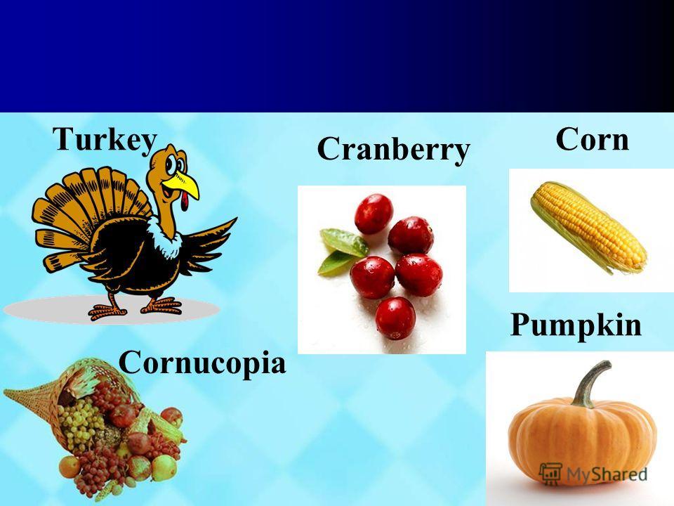 Turkey Corn Pumpkin Cornucopia Cranberry