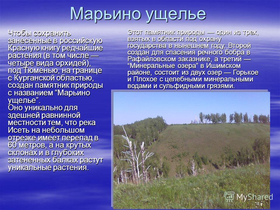 Марьино ущелье Чтобы сохранить занесенные в российскую Красную книгу редчайшие растения (в том числе четыре вида орхидей), под Тюменью, на границе с Курганской областью, создан памятник природы с названием Марьино ущелье. Оно уникально для здешней ра