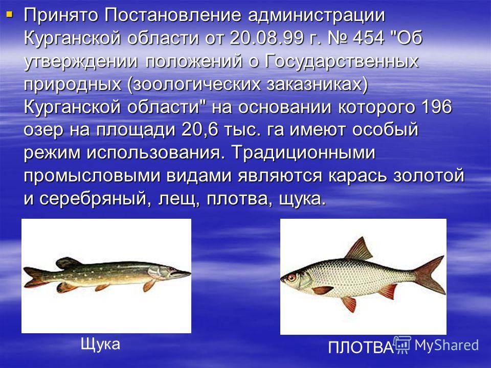 Принято Постановление администрации Курганской области от 20.08.99 г. 454