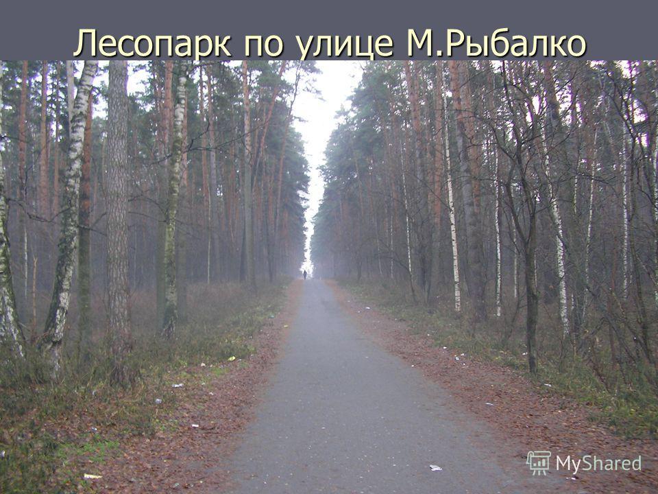 Лесопарк по улице М.Рыбалко