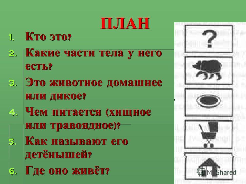 ПЛАН 1. Кто это ? 2. Какие части тела у него есть ? 3. Это животное домашнее или дикое ? 4. Чем питается ( хищное или травоядное )? 5. Как называют его детёнышей ? 6. Где оно живёт ?