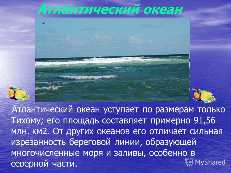 Атлантический океан Атлантический океан уступает по размерам только Тихому; его площадь составляет примерно 91,56 млн. км2. От других океанов его отличает сильная изрезанность береговой линии, образующей многочисленные моря и заливы, особенно в север