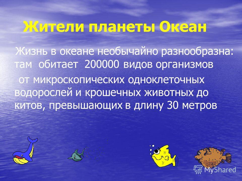 Жители планеты Океан Жизнь в океане необычайно разнообразна: там обитает 200000 видов организмов от микроскопических одноклеточных водорослей и крошечных животных до китов, превышающих в длину 30 метров