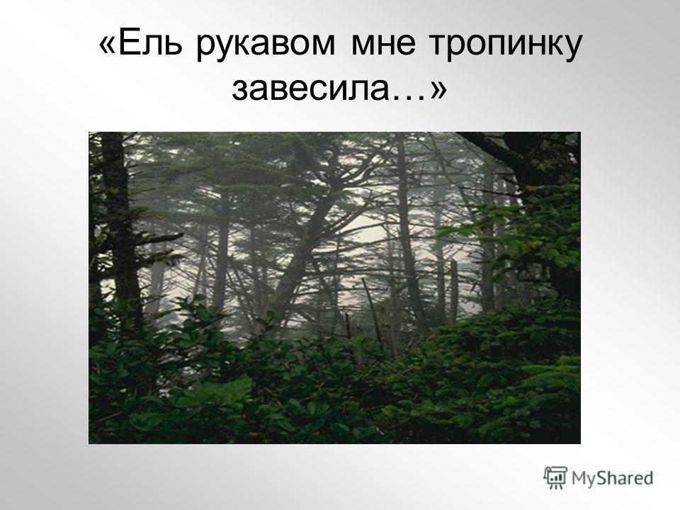 «Ель рукавом мне тропинку завесила…»