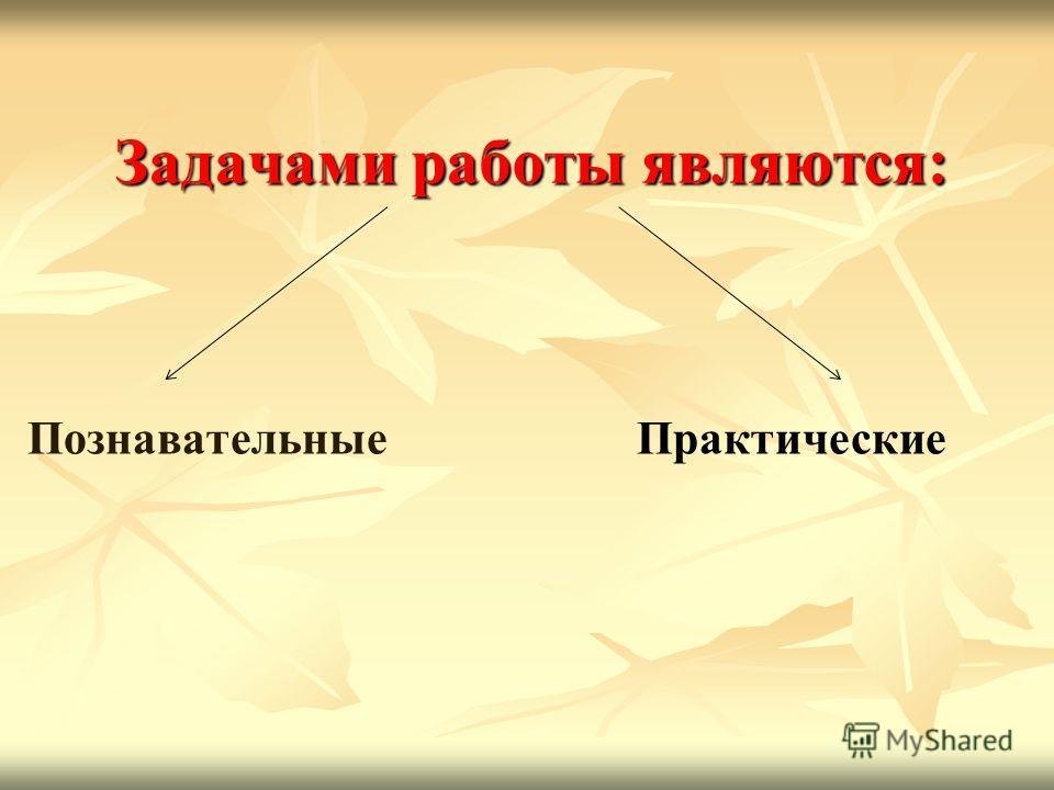 Задачами работы являются: ПознавательныеПрактические