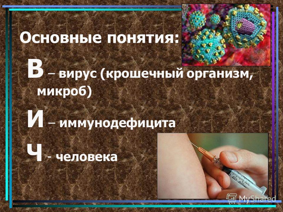 Основные понятия: В – вирус (крошечный организм, микроб) И – иммунодефицита Ч - человека