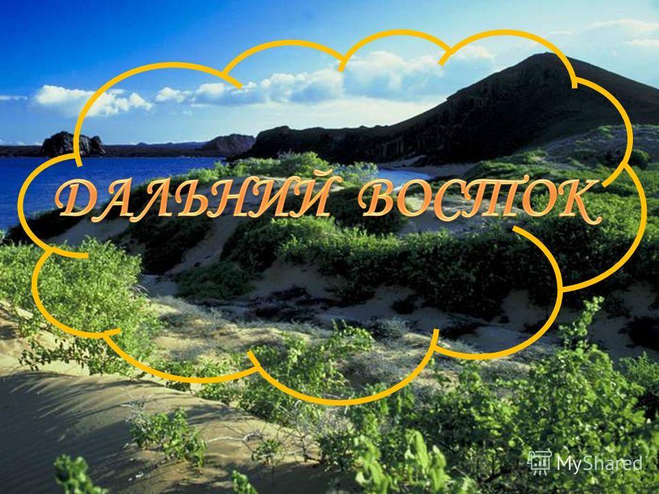 Доклад на тему природа дальнего востока 9484