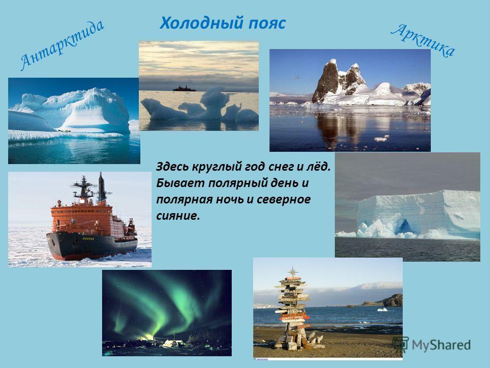 Здесь круглый год снег и лёд. Бывает полярный день и полярная ночь и северное сияние. Холодный пояс Антарктида Арктика