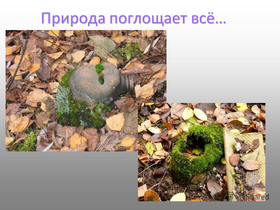 Природа поглощает всё…