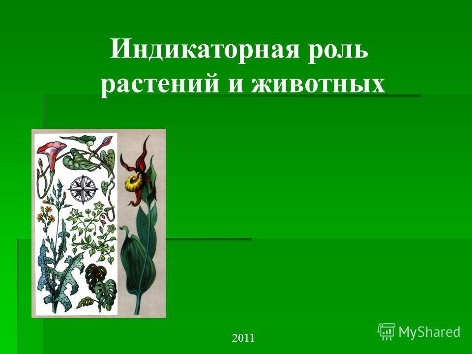 Индикаторная роль растений и животных 2011