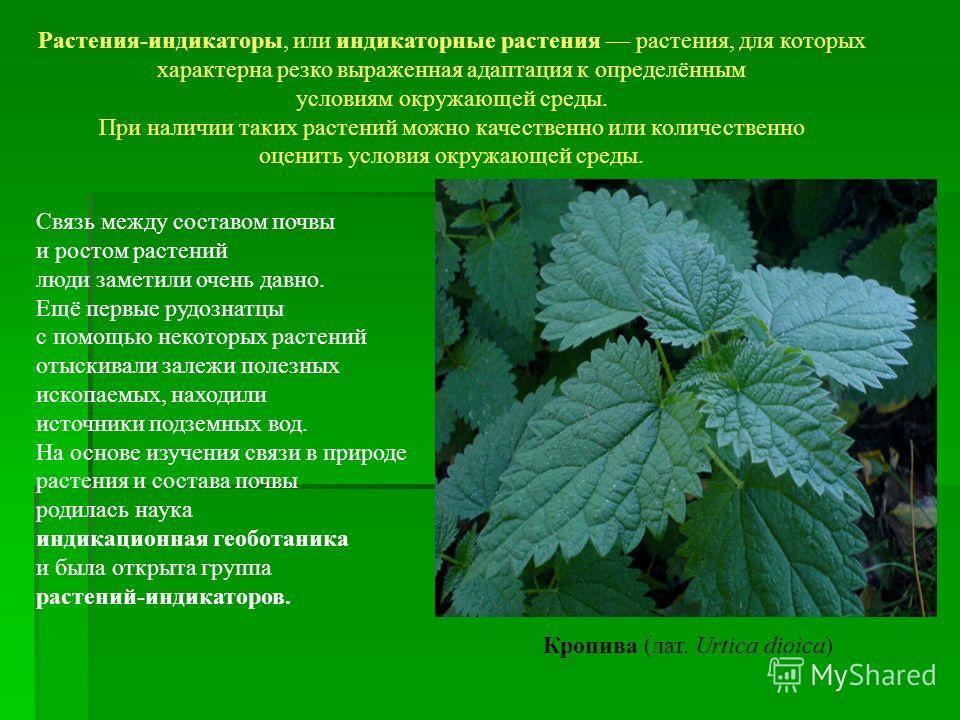 Растения-индикаторы, или индикаторные растения растения, для которых характерна резко выраженная адаптация к определённым условиям окружающей среды. При наличии таких растений можно качественно или количественно оценить условия окружающей среды. Связ