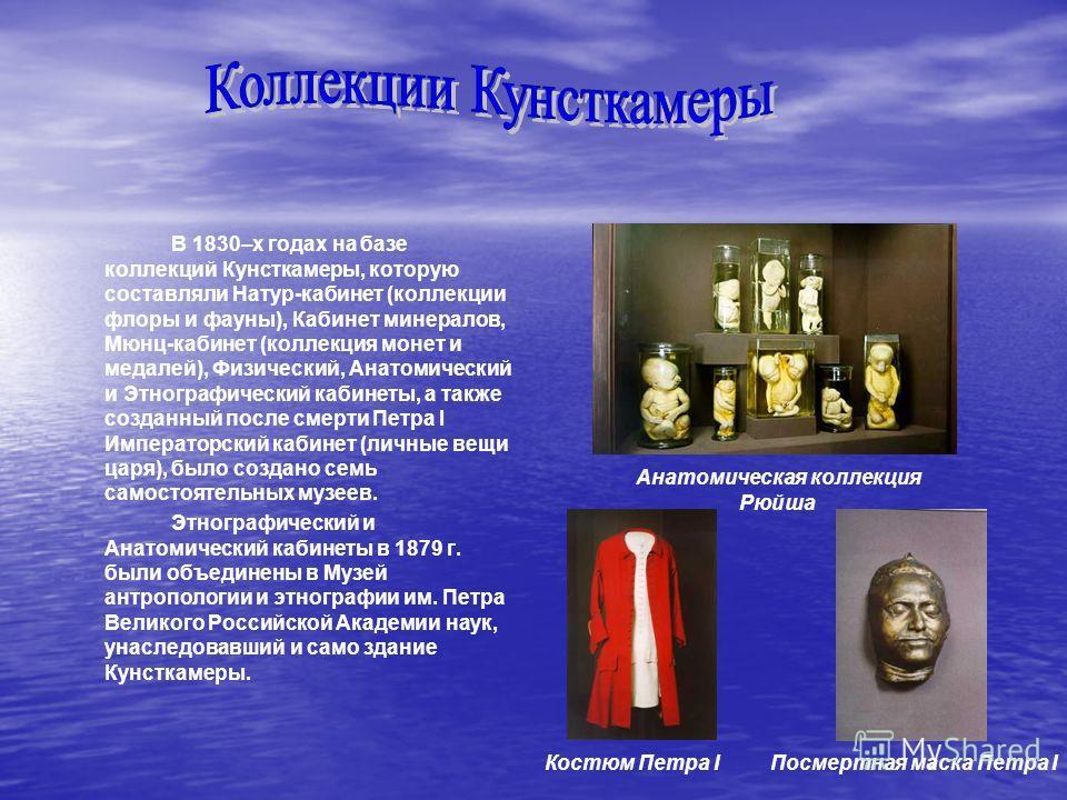 В 1830–х годах на базе коллекций Кунсткамеры, которую составляли Натур-кабинет (коллекции флоры и фауны), Кабинет минералов, Мюнц-кабинет (коллекция монет и медалей), Физический, Анатомический и Этнографический кабинеты, а также созданный после смерт