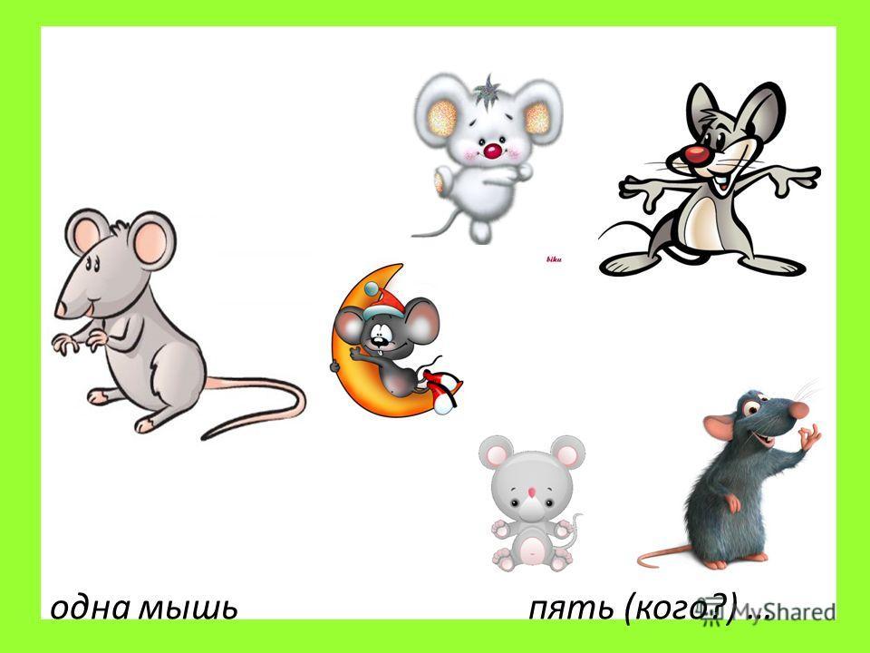 одна мышь пять (кого?) …