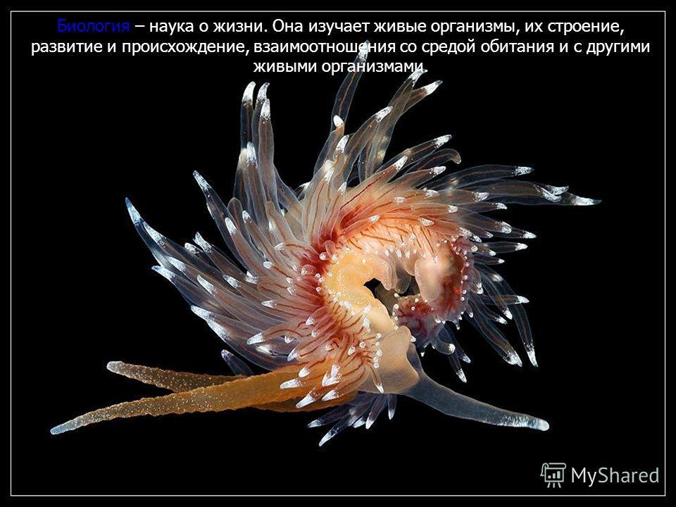 Биология – наука о жизни. Она изучает живые организмы, их строение, развитие и происхождение, взаимоотношения со средой обитания и с другими живыми организмами.