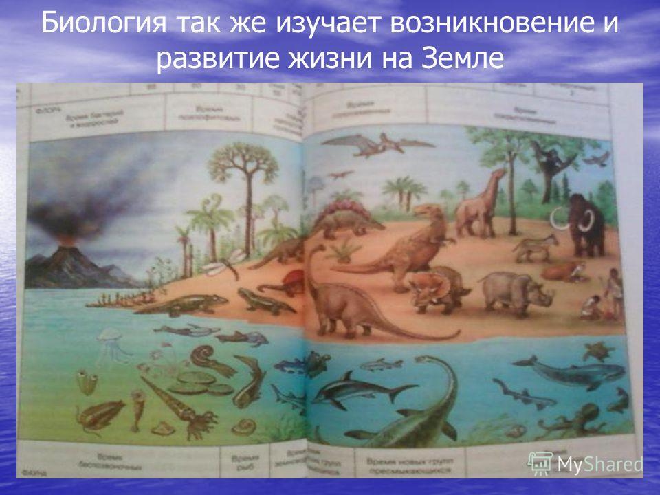 Биология так же изучает возникновение и развитие жизни на Земле