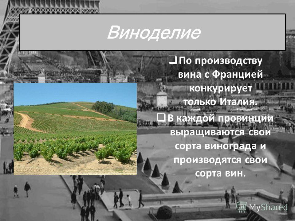 Виноделие По производству вина с Францией конкурирует только Италия. В каждой провинции выращиваются свои сорта винограда и производятся свои сорта вин.