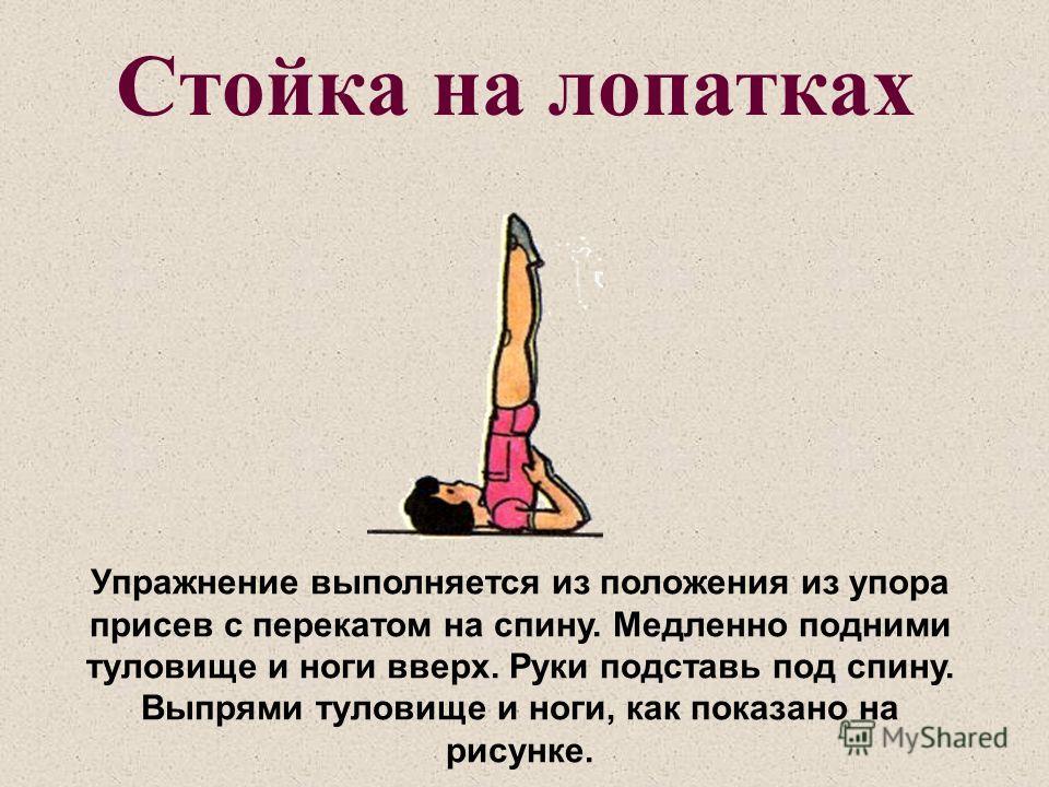 Стойка на лопатках Упражнение выполняется из положения из упора присев с перекатом на спину. Медленно подними туловище и ноги вверх. Руки подставь под спину. Выпрями туловище и ноги, как показано на рисунке.
