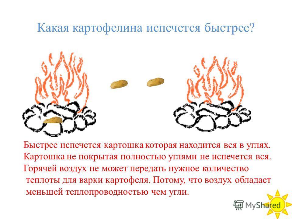 Какая картофелина испечется быстрее? Быстрее испечется картошка которая находится вся в углях. Картошка не покрытая полностью углями не испечется вся. Горячей воздух не может передать нужное количество теплоты для варки картофеля. Потому, что воздух
