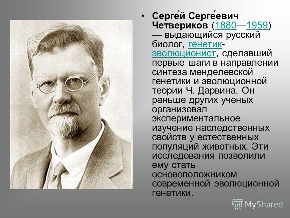 Серге́й Серге́евич Четверико́в (18801959) выдающийся русский биолог, генетик- эволюционист, сделавший первые шаги в направлении синтеза менделевской генетики и эволюционной теории Ч. Дарвина. Он раньше других ученых организовал экспериментальное изуч