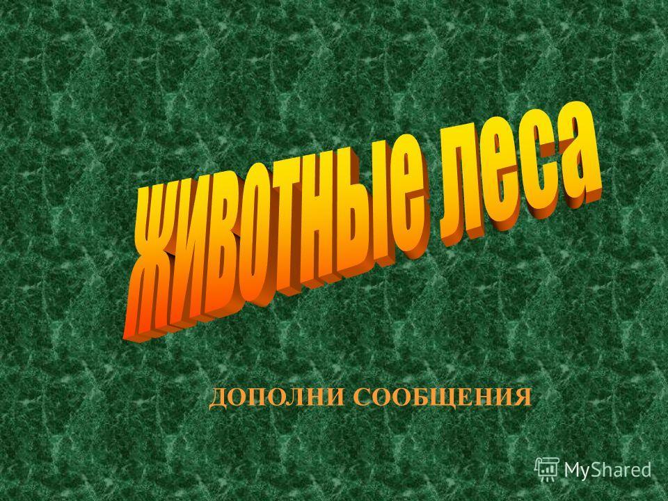 КАКОЕ ДЕРЕВО ЯВЛЯЕТСЯ СИМВОЛОМ РОССИИ? КАКОЕ ДЕРЕВО ЯВЛЯЕТСЯ СИМВОЛОМ РОССИИ?