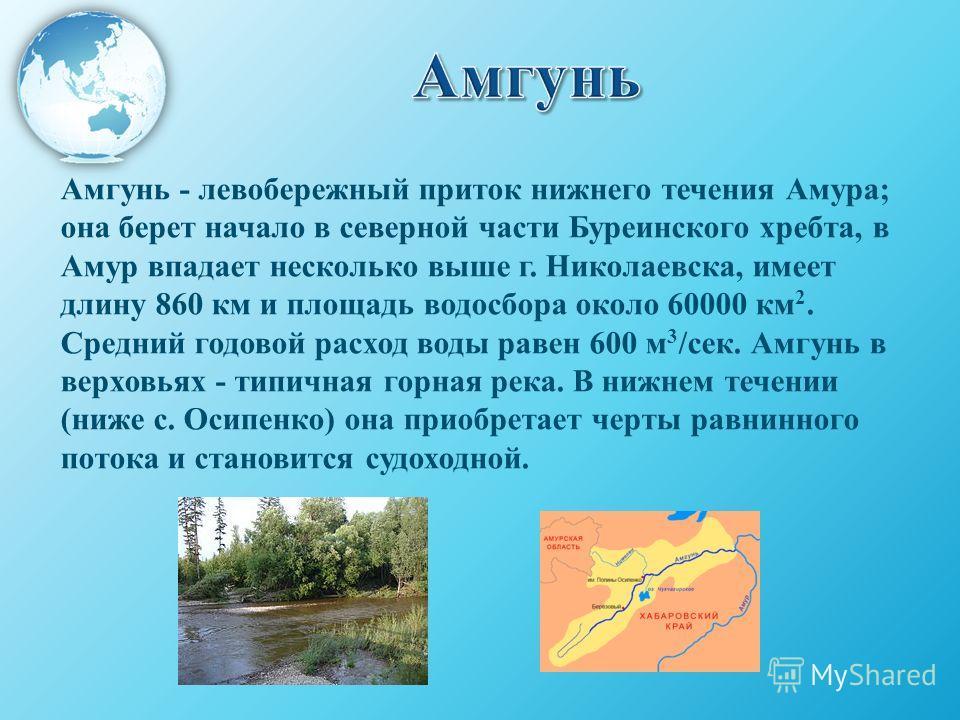 Амгунь - левобережный приток нижнего течения Амура; она берет начало в северной части Буреинского хребта, в Амур впадает несколько выше г. Николаевска, имеет длину 860 км и площадь водосбора около 60000 км 2. Средний годовой расход воды равен 600 м 3