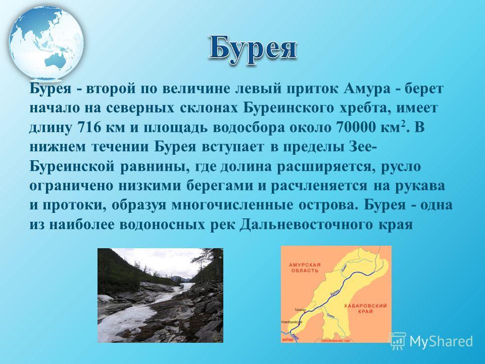Бурея - второй по величине левый приток Амура - берет начало на северных склонах Буреинского хребта, имеет длину 716 км и площадь водосбора около 70000 км 2. В нижнем течении Бурея вступает в пределы Зее- Буреинской равнины, где долина расширяется, р