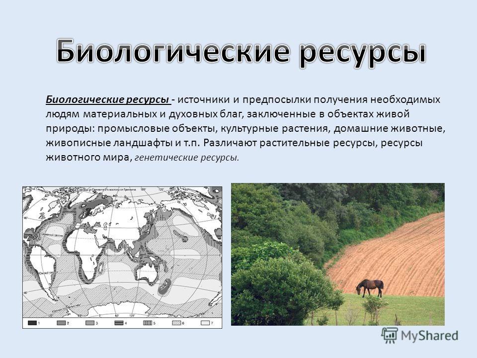 Биологические ресурсы - источники и предпосылки получения необходимых людям материальных и духовных благ, заключенные в объектах живой природы: промысловые объекты, культурные растения, домашние животные, живописные ландшафты и т.п. Различают растите