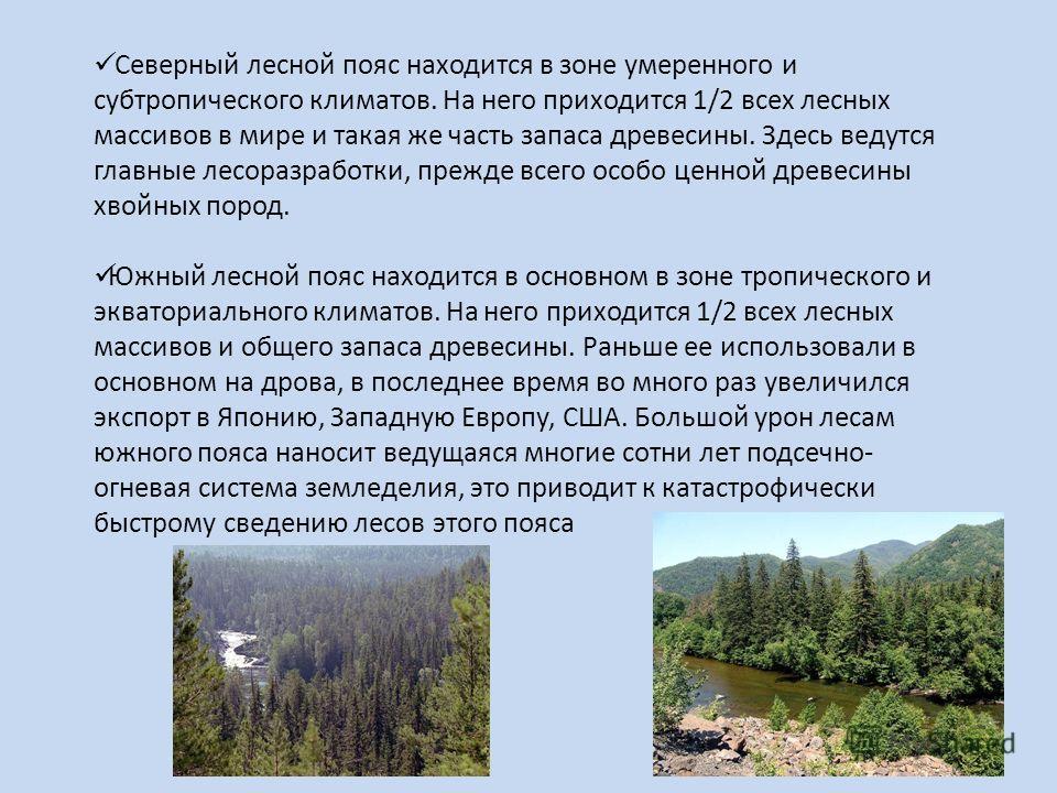 Северный лесной пояс находится в зоне умеренного и субтропического климатов. На него приходится 1/2 всех лесных массивов в мире и такая же часть запаса древесины. Здесь ведутся главные лесоразработки, прежде всего особо ценной древесины хвойных пород