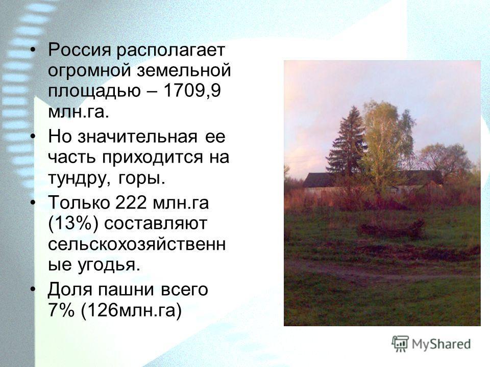 Россия располагает огромной земельной площадью – 1709,9 млн.га. Но значительная ее часть приходится на тундру, горы. Только 222 млн.га (13%) составляют сельскохозяйственн ые угодья. Доля пашни всего 7% (126млн.га)