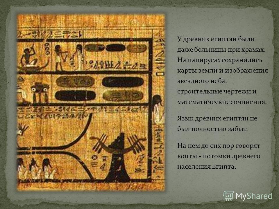 Благодаря папирусам мы узнали о многих верованиях и знаниях древних египтян.