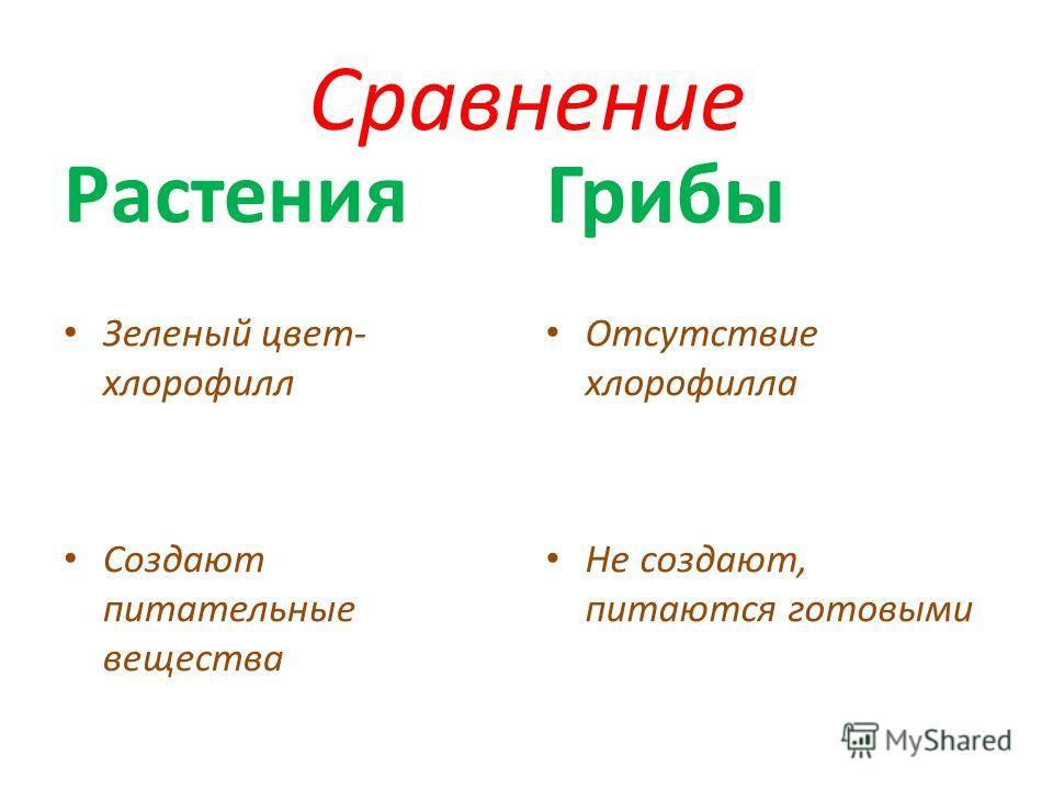 Сравнение Зеленый цвет- хлорофилл Создают питательные вещества Грибы Отсутствие хлорофилла Не создают, питаются готовыми Растения