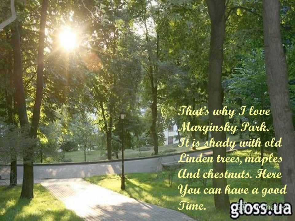 Thats why I love Maryinsky Park. It is shady with old Linden trees, maples And chestnuts. Here You can have a good Time.