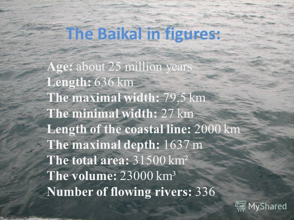 The Baikal in figures: Age: about 25 million years Length: 636 km The maximal width: 79,5 km The minimal width: 27 km Length of the coastal line: 2000 km The maximal depth: 1637 m The total area: 31500 km² The volume: 23000 km³ Number of flowing rive