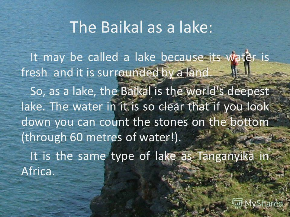 The Baikal as a lake: It may be called a lake because its water is fresh and it is surrounded by a land. So, as a lake, the Baikal is the world's deepest lake. The water in it is so clear that if you look down you can count the stones on the bottom (