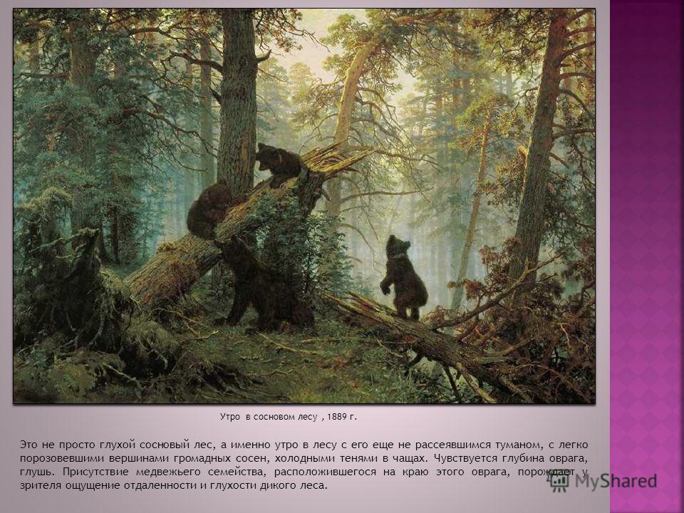 Это не просто глухой сосновый лес, а именно утро в лесу с его еще не рассеявшимся туманом, с легко порозовевшими вершинами громадных сосен, холодными тенями в чащах. Чувствуется глубина оврага, глушь. Присутствие медвежьего семейства, расположившегос